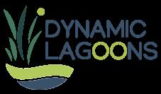 Dynamic Lagoons